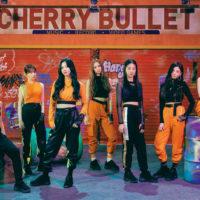 Cherry Bullet Profile