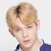 Produce X 101 Profile - K-Pop Database / dbkpop com