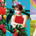 Twice Mina Jihyo Sana Fancy You Teaser
