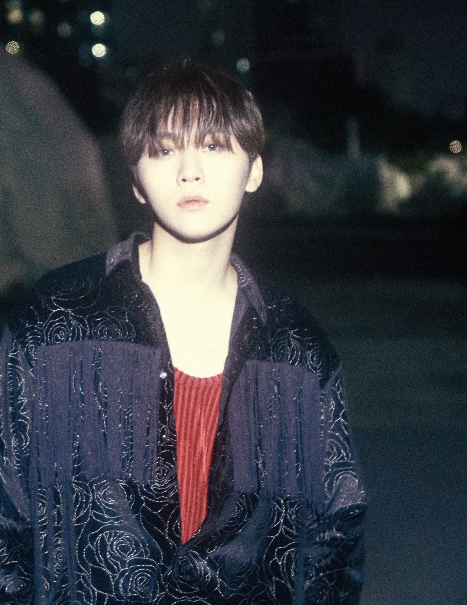 Seventeen Seungkwan An Ode Concept